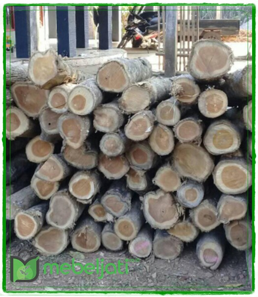 Gambar kayu jati kualitas A1, A2 dan A3